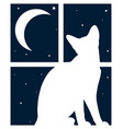 window with night sky and cat vector image