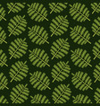 pattern color set decorative of tropical palm vector image