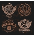 Basketball Logos American Logo Sports vector image