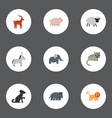 flat icons swine hound moose and other vector image vector image