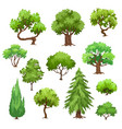 green trees collection vector image