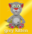 grey kitten vector image