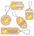 labels with various fruitsfor banana vector image vector image