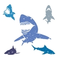 Set of Sharks vector image vector image