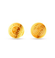 two bright glossy golden ancient coins on white vector image vector image
