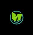 herbal green leaf bio organic logo vector image