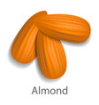 almond mockup realistic style vector image