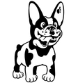 cartoon french bulldog black white vector image vector image