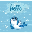 Hello Cute card with cartoon baby Seal vector image vector image
