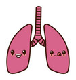 lungs human organ kawaii cartoon vector image