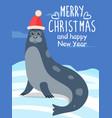 merry christmas greeting card with sea calf seal vector image