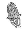Stylized mieduza zentangle vector image vector image