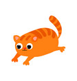 ute red cat with big black eyes and a nose in the vector image vector image