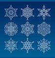 vintage outlined snowflakes isolated vector image vector image