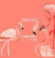 2019 coral color background flamingo design vector image