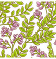 astragalus pattern vector image vector image