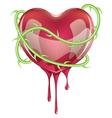 Bleeding Red Heart vector image
