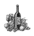 bottle wine with two glasses and grapes winery vector image