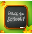 Chalk Back to School sign on black school board vector image