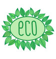 eco sign in oval frame with leaves around vector image vector image