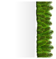 fir tree border with ripped paper vector image vector image