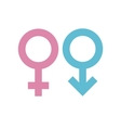 Gender signs vector image