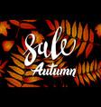 orange autumn sale background hand drawn autumn vector image