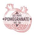 pomegranate cut in half sweet fruit menu label vector image