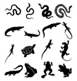 Reptiles icons set vector image vector image