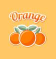 retro orange on pale orange background vector image vector image