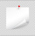 square sheet paper with a curled corner pins vector image vector image