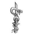 tattoo dagger with snake dagger decorated vector image