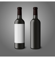 Two blank black realistic bottles for red wine vector image vector image