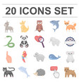 an unrealistic animal cartoon icons in set vector image vector image