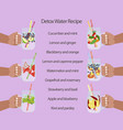 detox water with fruits vector image vector image