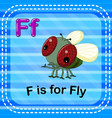 flashcard letter f is for fly vector image vector image