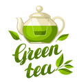 green tea with kettle of tea and vector image vector image