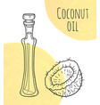 hand drawn coconut oil bottle with creme vector image vector image