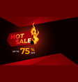hot sale background template with burning tag vector image vector image