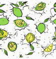 lime slices seamless pattern oganic lemon anti vector image vector image