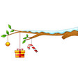 merry christmas with tree branch and gift vector image