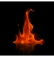 Red Fire Flame Bonfire Isolated on Background vector image