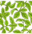 basil plant pattern vector image