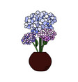 beautiful hydrangea with colorful flower in pot vector image