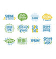 bundle of spring or springtime phrases or slogans vector image