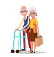elderly couple modern grandparents vector image
