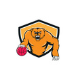 Grizzly Bear Angry Dribbling Basketball Shield vector image vector image
