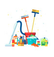 house cleaning tools and products packs flat vector image