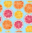 watercolor citrus pattern vector image