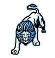 angry crouching white lion mascot vector image vector image